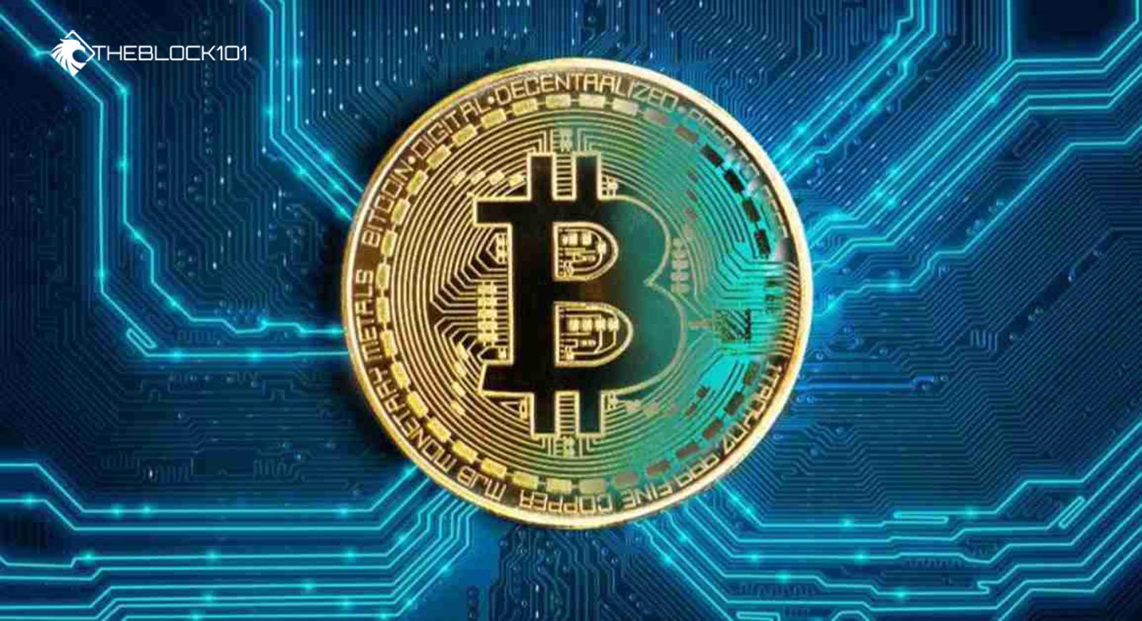 Sàn giao dịch Bitcoin là gì? TOP 5 các sàn giao dịch mua bán Bitcoin và  tiền ảo uy tín tại Việt Nam